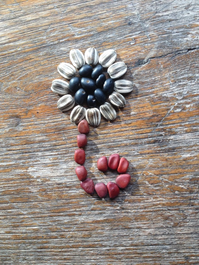 Seed flower 12 - black beans