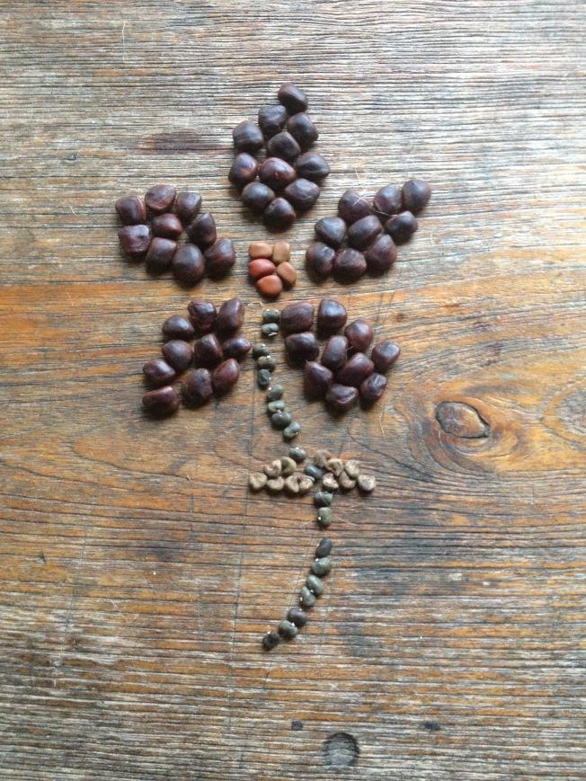Seed flower 2