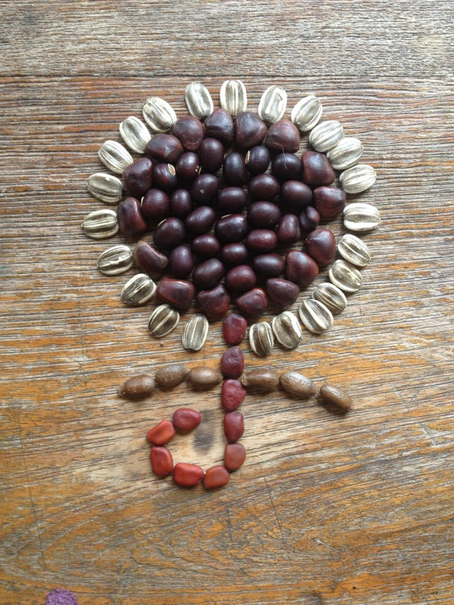 Seed flower 25