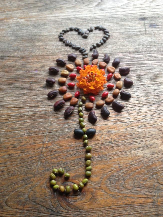Seed flower 32