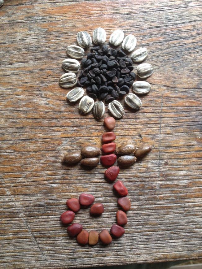 Seed flower 4