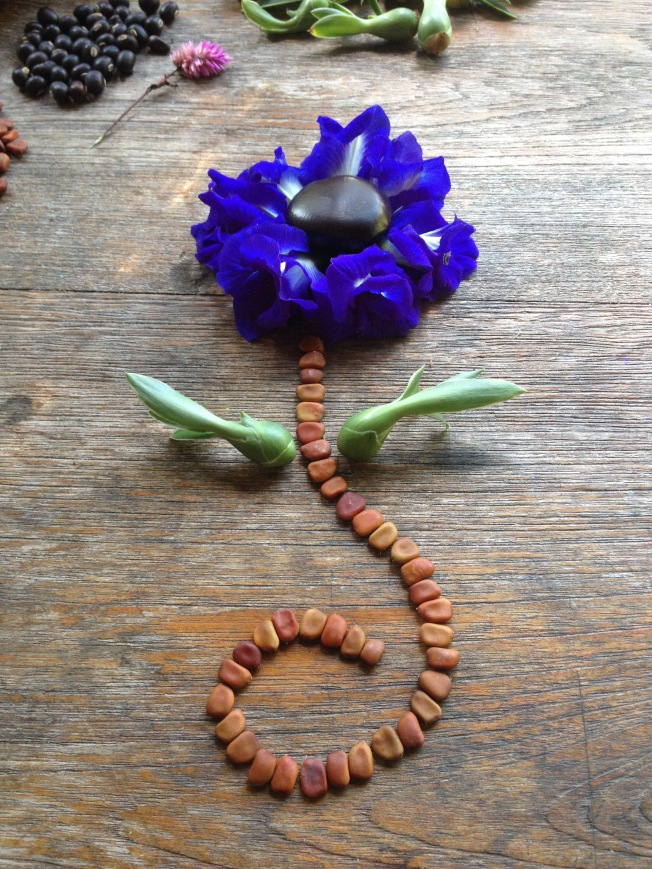 Seed flower 47