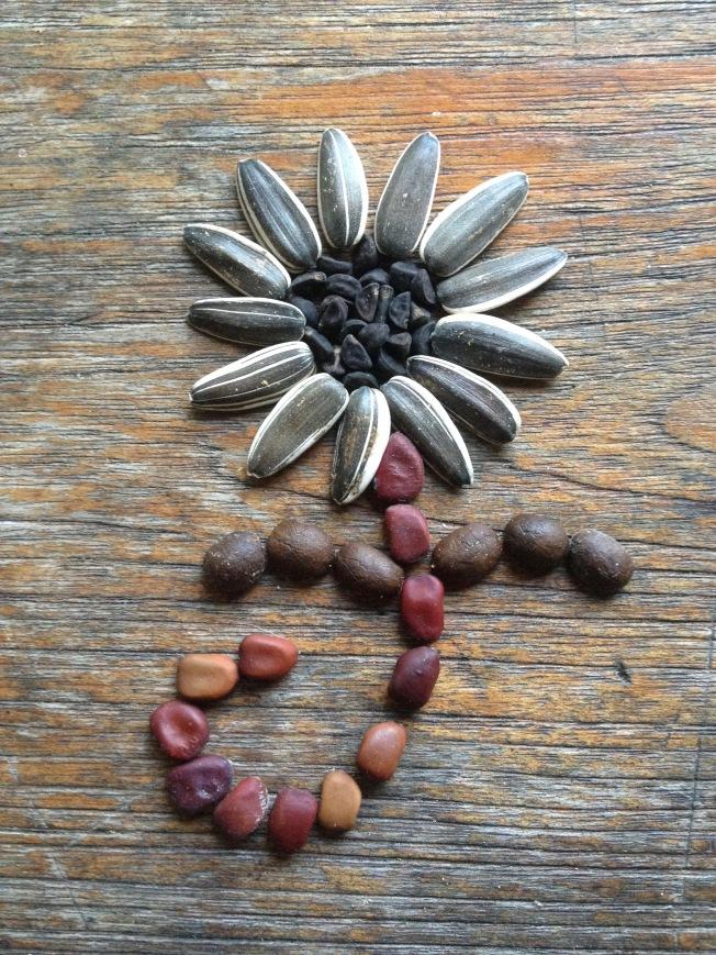 Seed flower 51