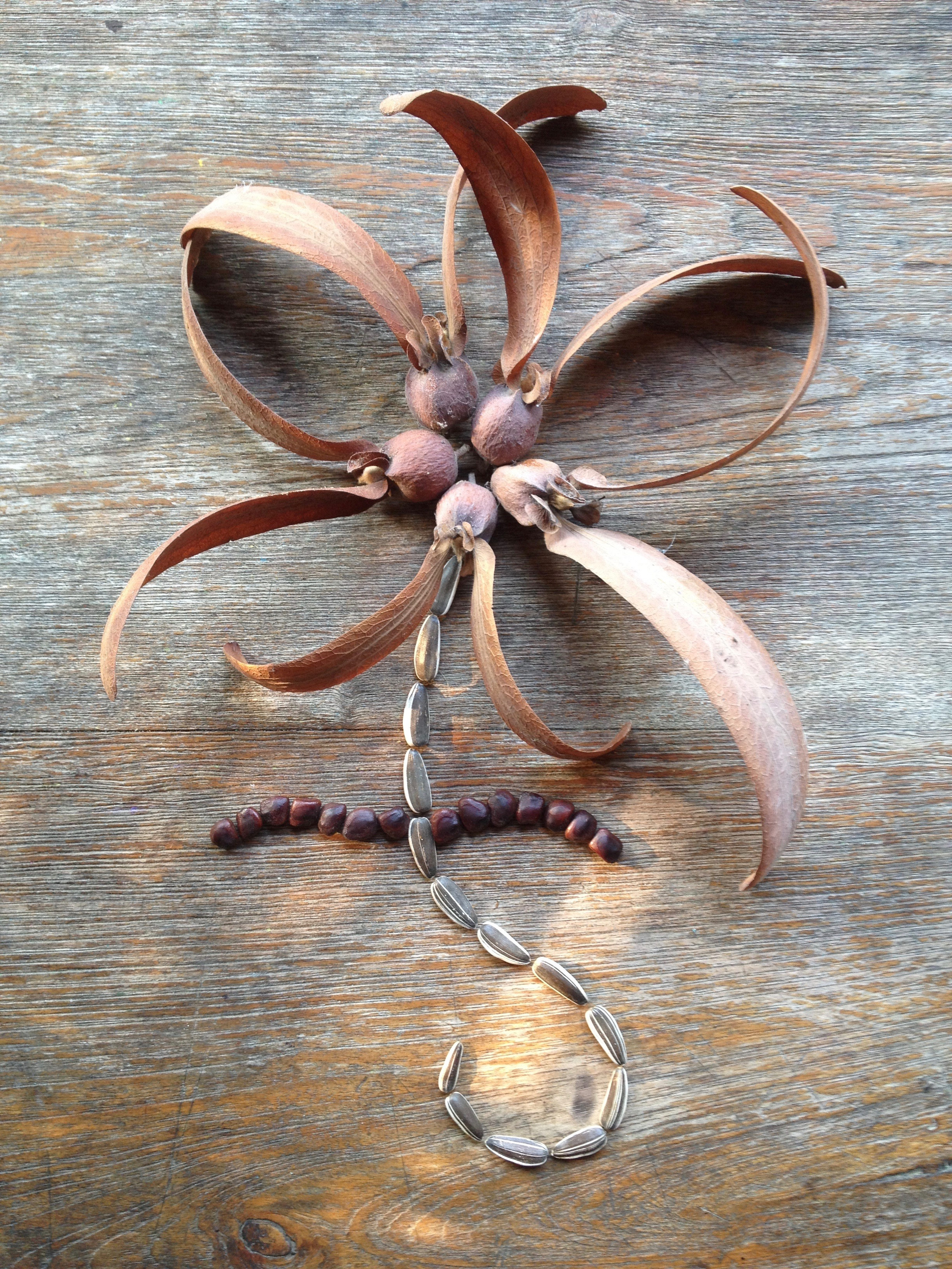 Seed flower 58