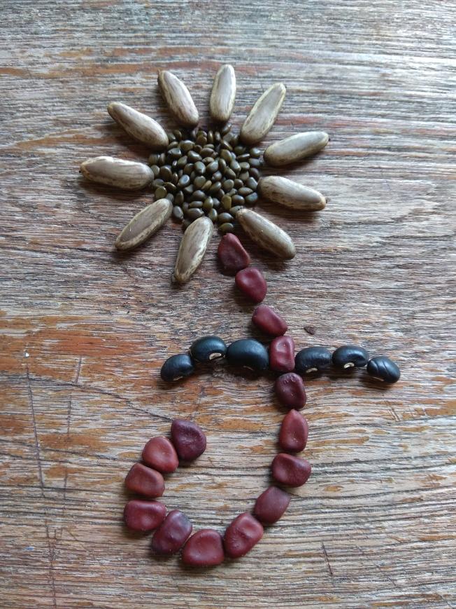 Seed flower 78