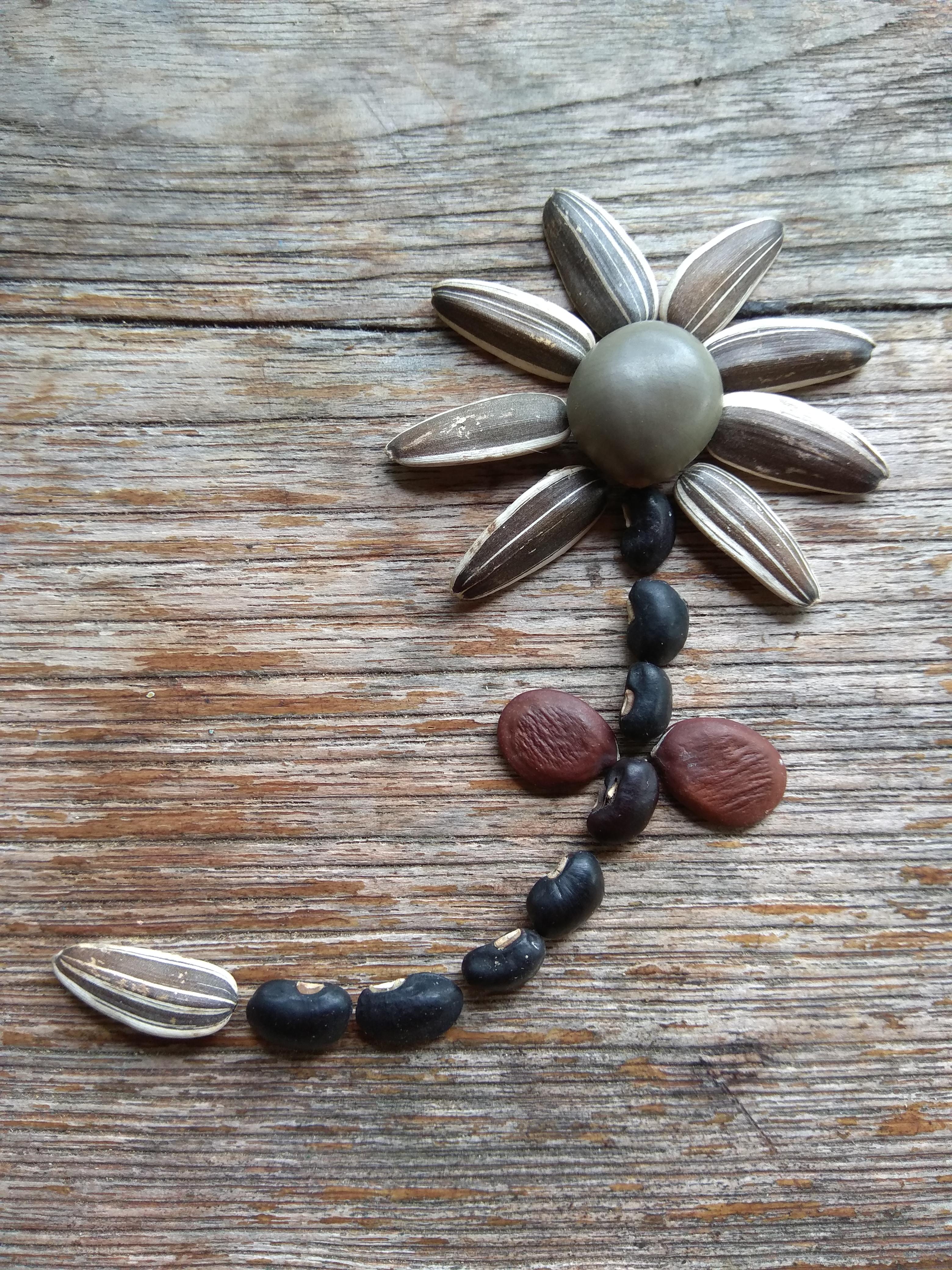 Seed flower 87