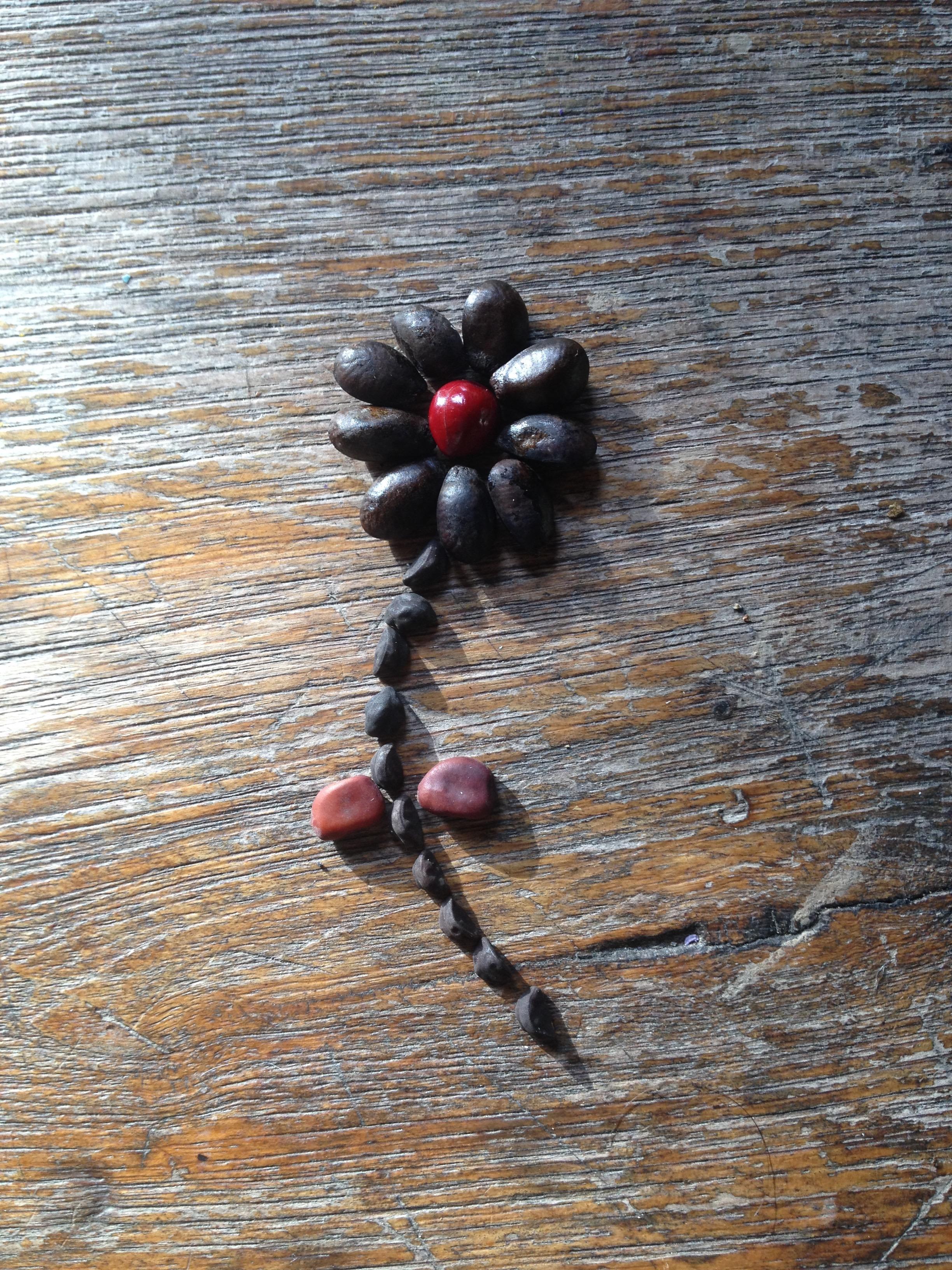 Seed flower 9