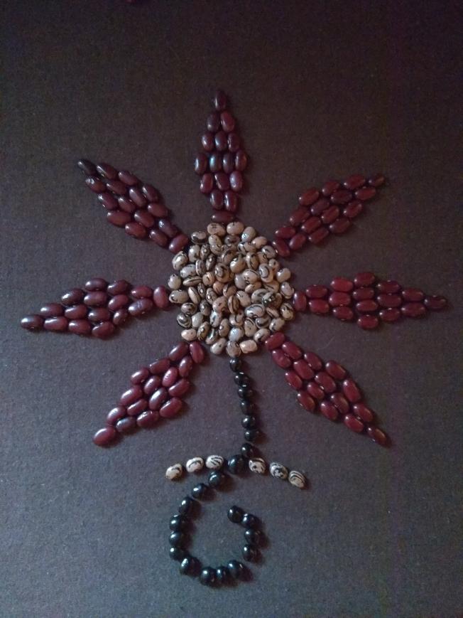 Seed flower 105