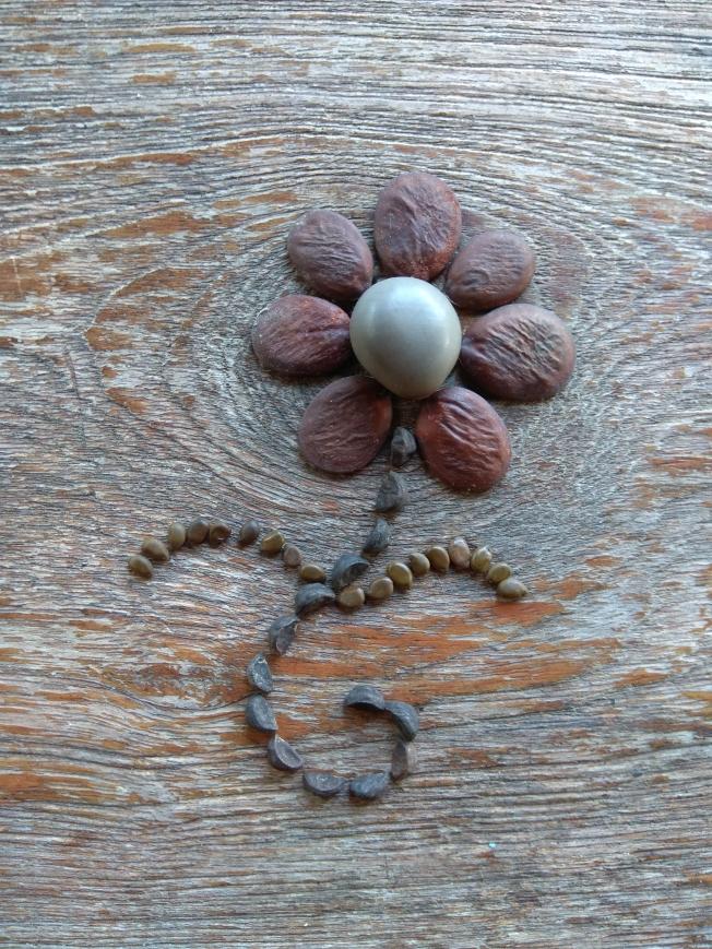 Seed flower 116