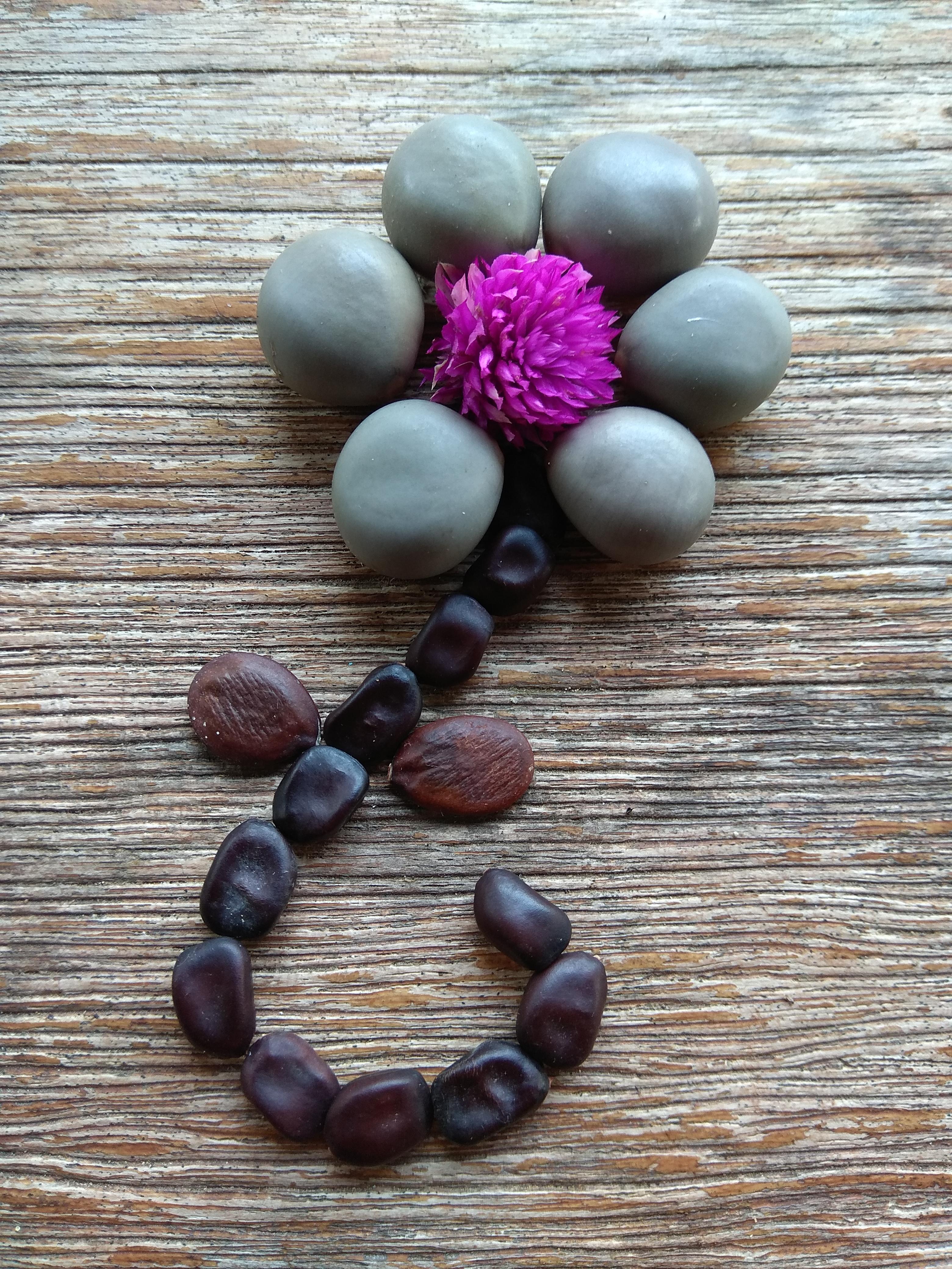 Seed flower 124