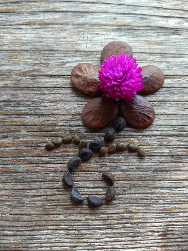 Seed flower 125